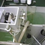фото септика на участке