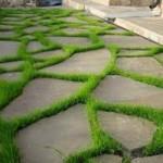 фото - садовые дорожки
